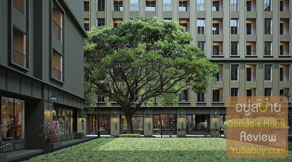 ตำแหน่งนี้ยืนอยู่ตรงหน้าอาคาร C มองไปยังอาคาร A จะเห็นต้นก้ามปูใหญ่อีกต้น และแนวร้านค้าเรียงกันที่ชั้นล่าง
