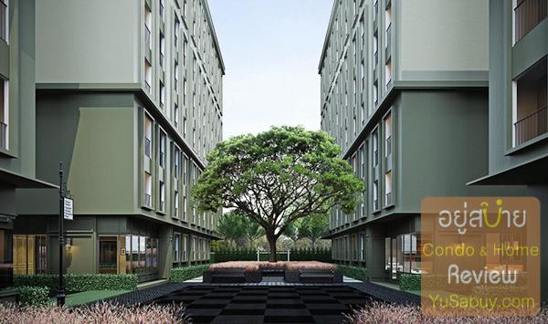 ระยะห่างระหว่างอาคาร C กับ E และ B กับ D ประมาณ 12 เมตร ปลูกต้นก้ามปูไว้ตรงกลาง